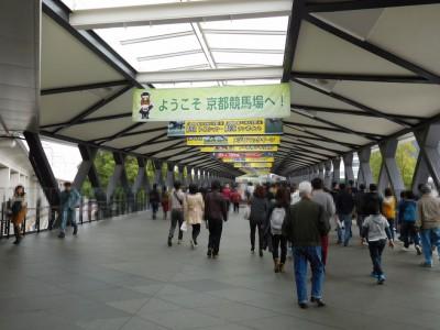 淀駅から京都競馬場までの直通路