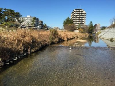 景観の良い河川敷のサイクリングロード1