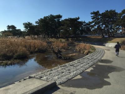 景観の良い河川敷のサイクリングロード2