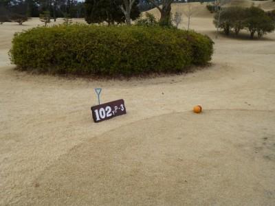 9番レディースティ―102ヤード