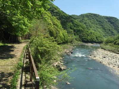 綺麗な武庫川