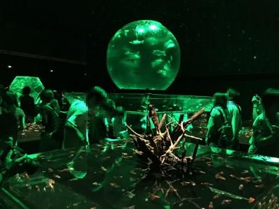 水槽(緑)