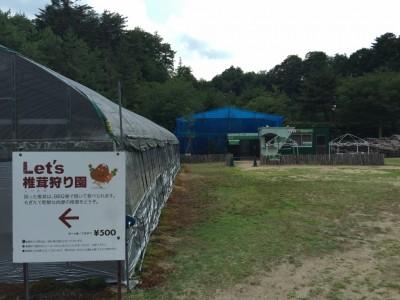 カブトムシ広場と椎茸狩り園