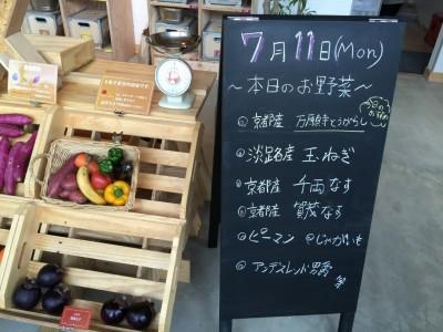 本日のお野菜(7/11)