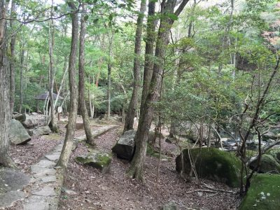 るり渓渓流歩道