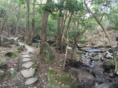 るり渓渓流歩道散策