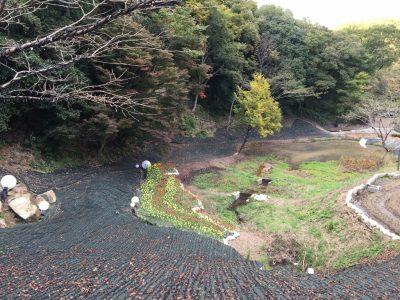 ファンタジーラグーンの池