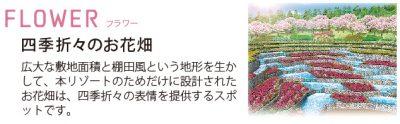 「FLOWER(フラワー)」四季折々のお花畑