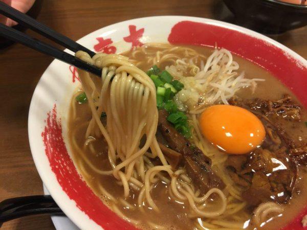 徳島ラーメンの麺