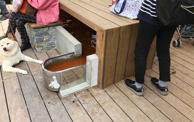 車椅子専用足湯スペース