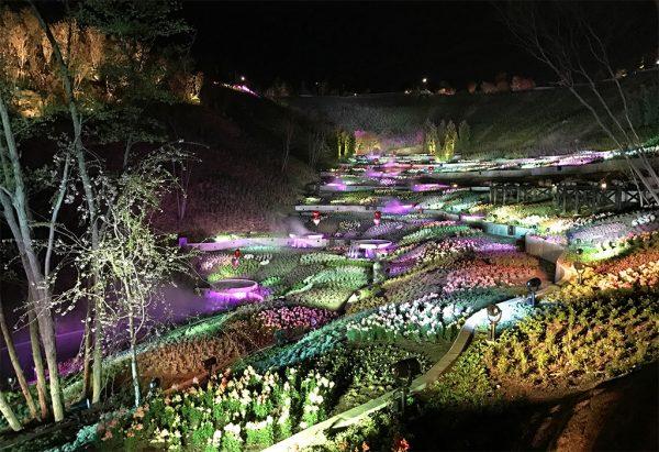 花結びの谷・イルミネーションショー2