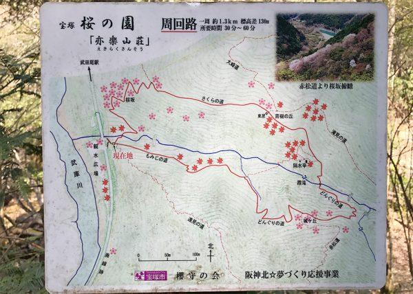 桜の園「亦楽山荘」周回路
