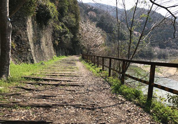 平日朝の廃線敷ハイキングコース