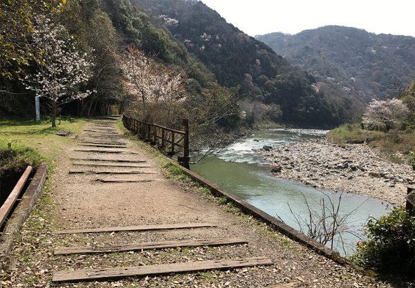 春・桜の季節のハイキング
