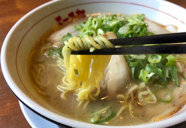 エース軒とんこつラーメン 麺
