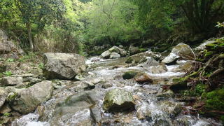 広瀬渓谷 琴の滝遊歩道