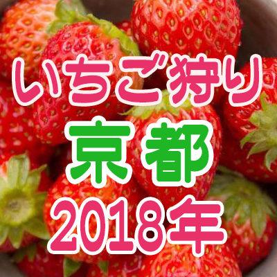 いちご狩り 京都 2018