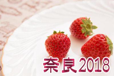 イチゴ狩り 予約 混雑 時期 期間 駐車場 スポット 品種 練乳 持ち帰り 関西 奈良 2018