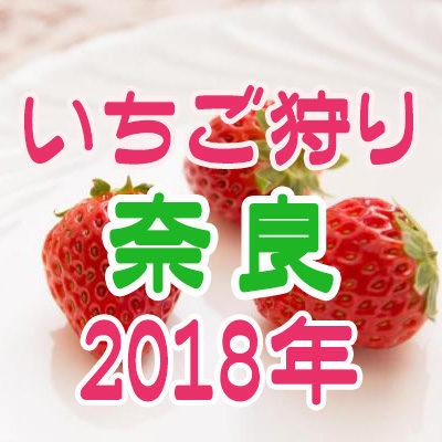 いちご狩り 奈良 2018