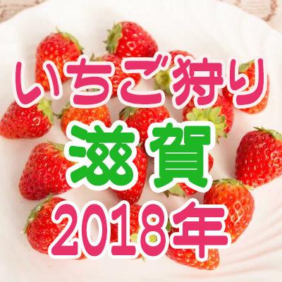 いちご狩り 滋賀 2018