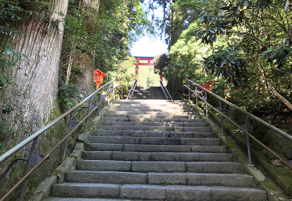 箱根神社 石段