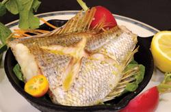 明石バル 明石の魚と地元野菜の店 バル OTTO
